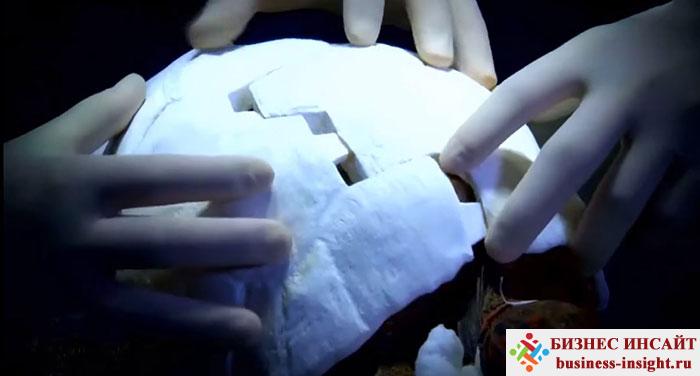 Панцирь для черепахи, напечатанный на 3D-принтере