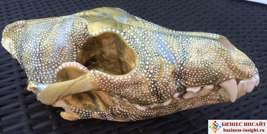 Декоративный череп с золотой мандалой Радужный волк
