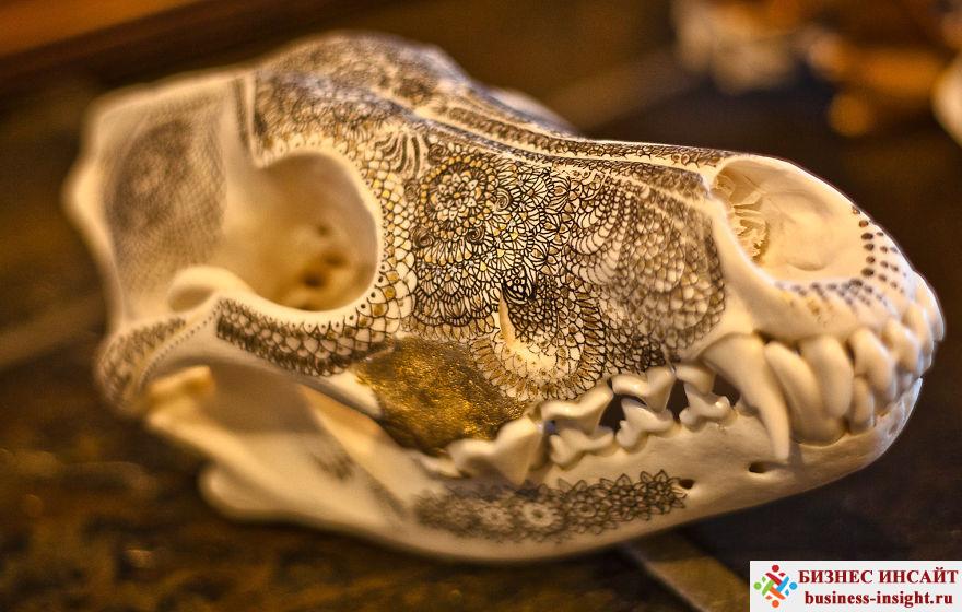 Декоративный череп с золотой мандалой Шаши волк