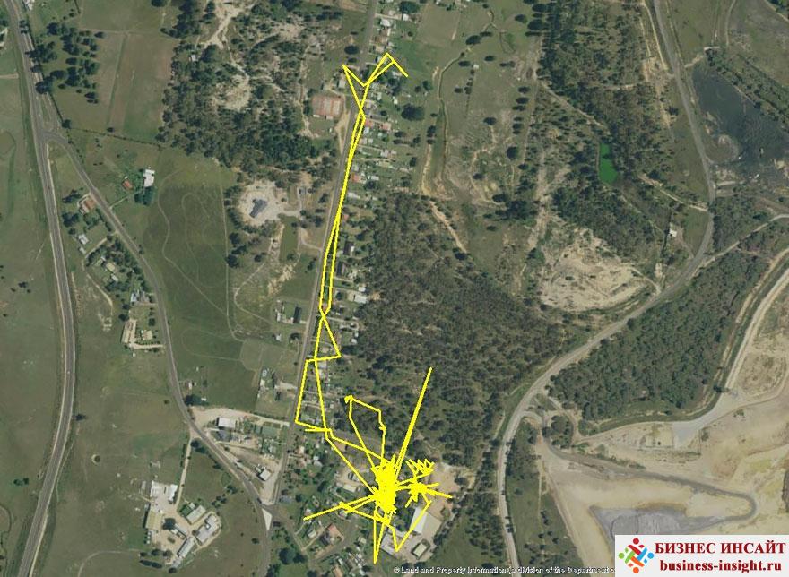 GPS-трекеры для домашних животных