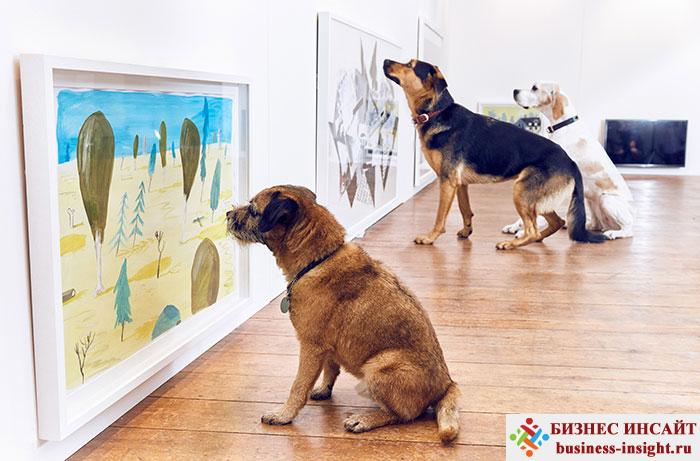 Художественная выставка для собак