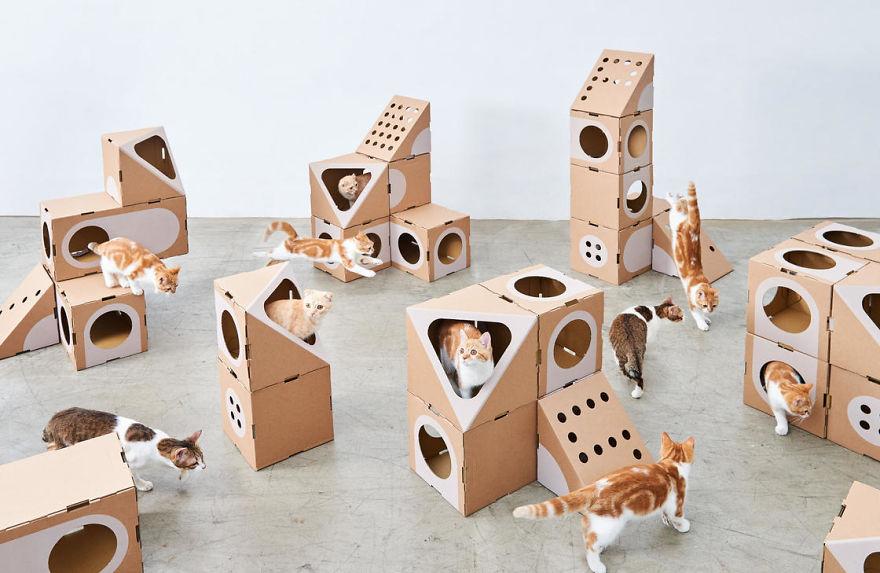 Модульный картонный лабиринт для кошек