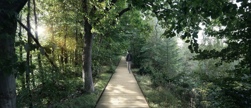 Пешеходная дорожка на уровне верхушек деревьев